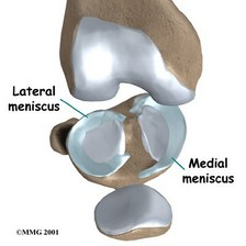 Meniscus--Dr. Nick Campos, West Hollywood Chiropractic
